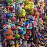 Picture of dog toys